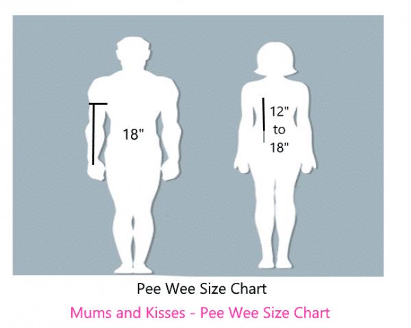 Pee Wee Cheer