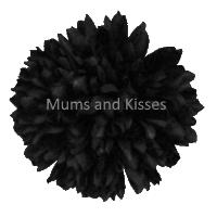 Black Mum Flower