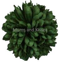 Green Mum Flower