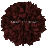 Burgundy Mum Flower