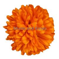 Orange Mum Flower