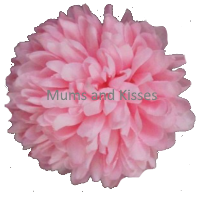Pink Mum Flower