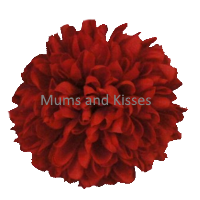 Red Mum Flower