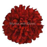 Red Mum Flower