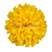 Yellow Mum Flower